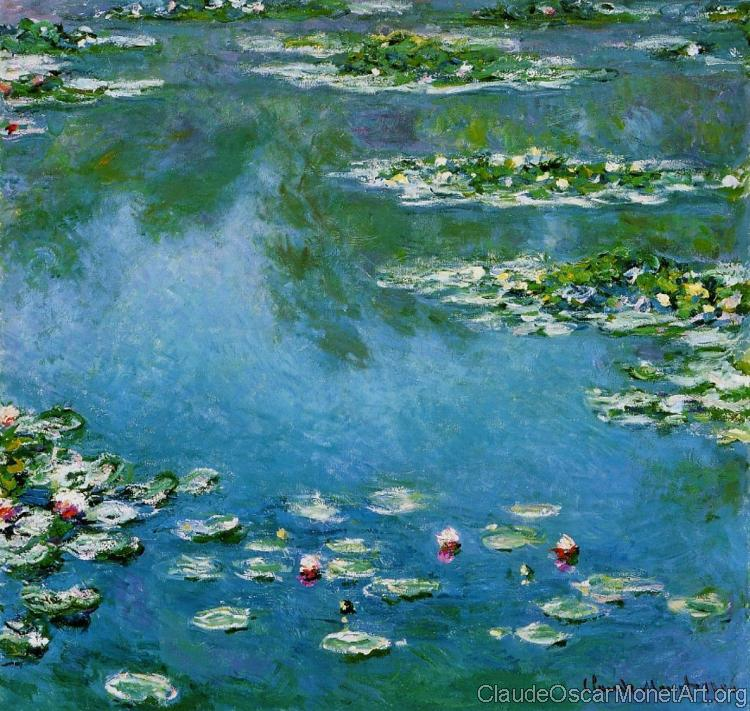 Water Lilies XV