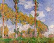 Poplars in Summer